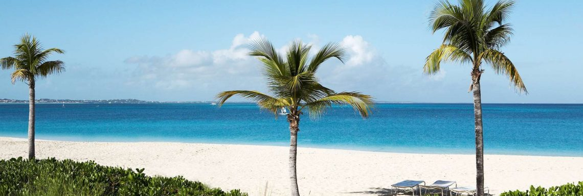 Image of a beach overlooking the sea and palm trees